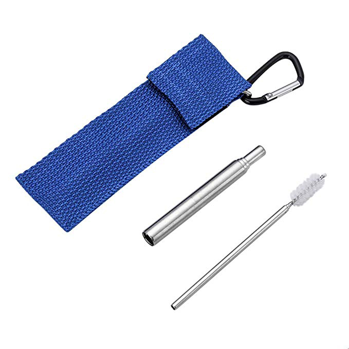 Telescopic Metal Straw w/ Bag Cleaning Brush