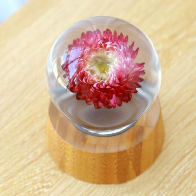 Chrysanthemum Specimen Crystal Ball