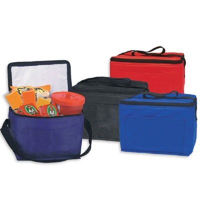 Reusable Picnic/Lunch Cooler Tote Bags Insulated
