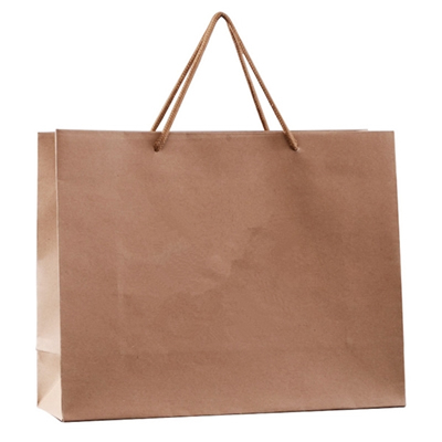 Recycled Brown Kraft Paper Bag