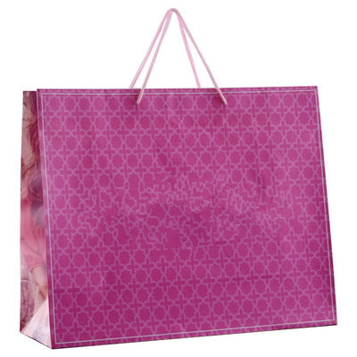 Paper Shopping Tote / Packaging Gift and Hand Bag